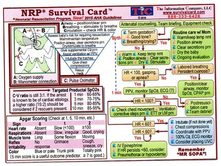 NRP Survival Card-2015 Guidelines