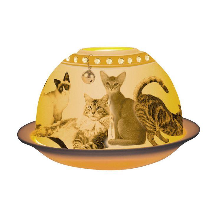 Bernardaud - Lithophanie Les Chats - #bernardaud #porcelaine #porcelain #tableware #tablesetting #tablescape