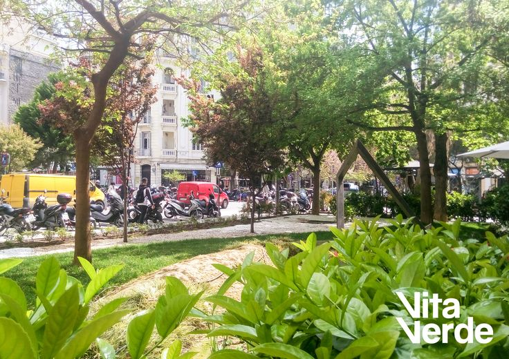 Visit our #green retreat in the center of busy #Thessaloniki! #localpark #localThessaloniki
