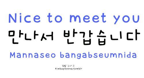 how to say nice meet you in korean language