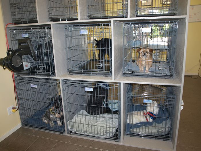 Build Own Dog Crate Downloadable Free Plans