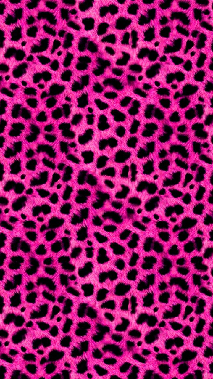Pink Leopard Print Wallpaper For Bedroom 17 Best Images About Animal Print On Pinterest Zebra Print