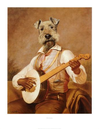 the troubadour by thierry poncelet