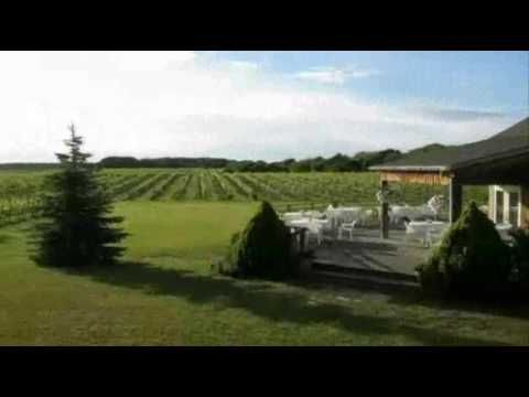 Winery - A Building Or Property That Produces Wine