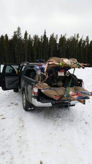 Finally good friend Gary Johnston puts some organic groceries in his new Tacoma.  Lol  Good work Gary enjoy the venison.