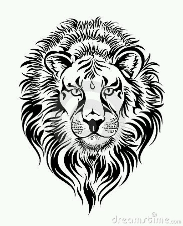 17 Best images about lion on Pinterest | Lion tattoo ...