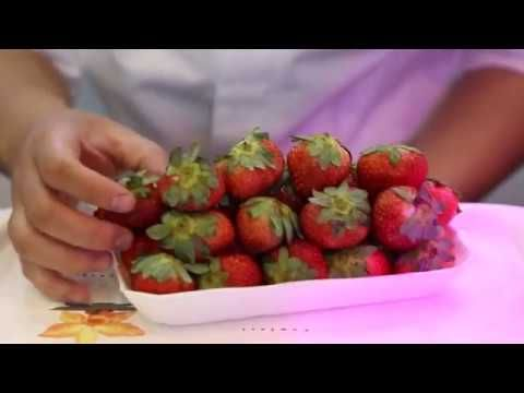 http://goo.gl/r9Faau Wellness exotic recipes