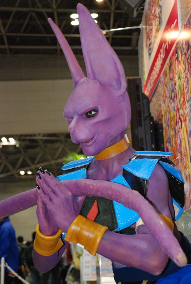 71 best images about beerus and dbz on pinterest son