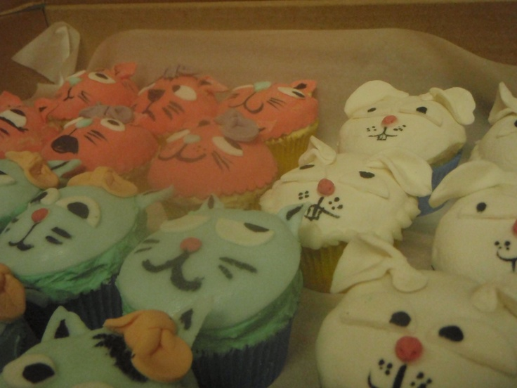 cup cakes for SPCA
