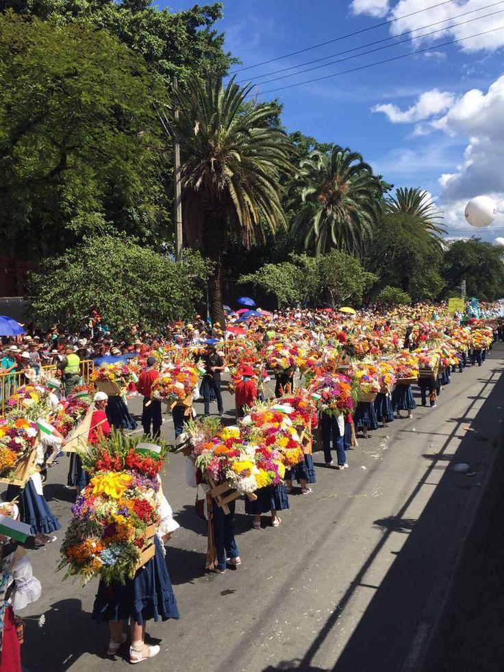 (3) Alcaldía de Medellín (@AlcaldiadeMed) | Twitter