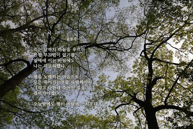 자신의 감성을 힐링합니다서시 -윤동주-  죽는 날까지 하늘을 우르러 한점 부끄럼이 없기를, 잎새에 이는 바람에도 나는 괴로워했다. 별을 노래하는 마음으로 모든 죽어가는것을 사랑해야지 그리고 나한테 주어진 길을 걸어가야겠다.  오늘밤에도 별이 바람에 스치운다.