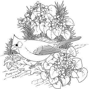 Teen Coloring Pages FoodColoringPrintable Coloring Pages Free