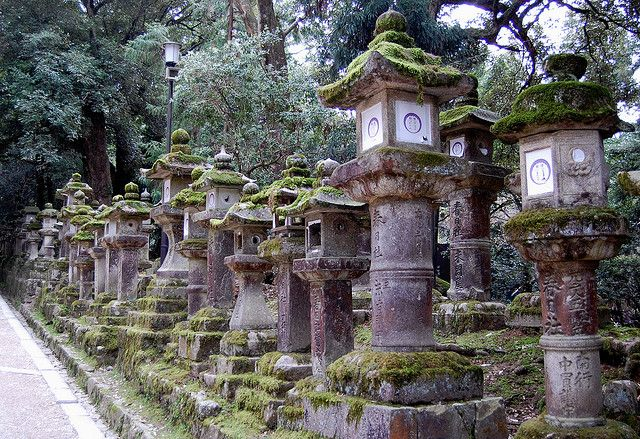 Stone lanterns at Kasuga Grand Shrine in Nara, Japan (by jpellgen).