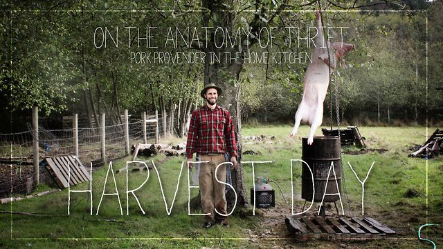"Great video on how to prepare the whole pig (blood sausage, pate, etc). ""On The Anatomy Of Thrift: Harvest Day by farmrun. The second episode in an instructional series in which we explore the economics of eating animals."""
