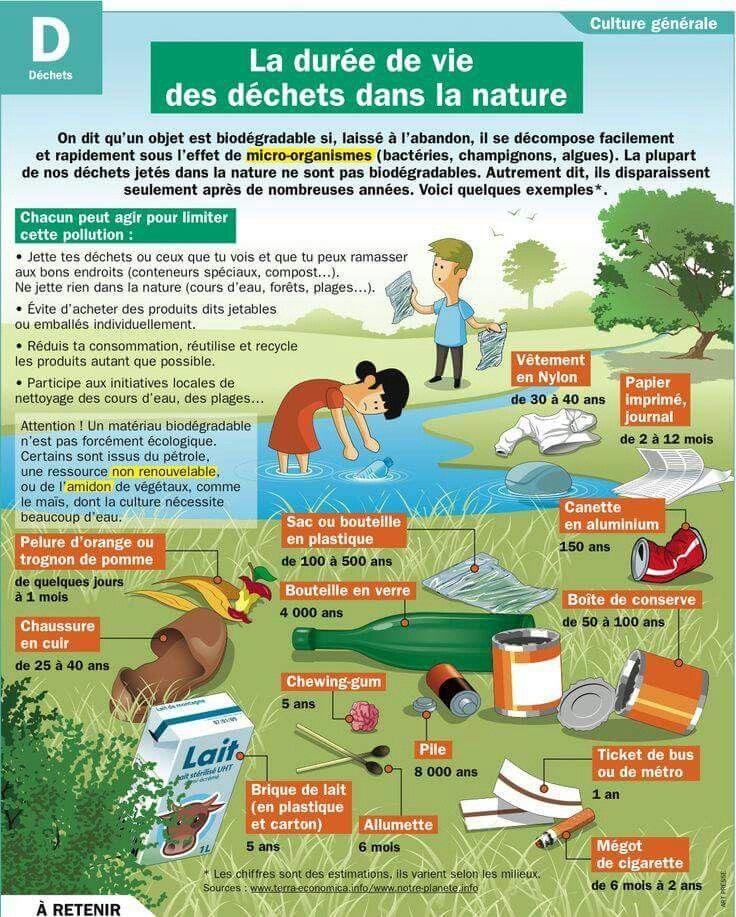 La durée de vie des déchets dans la nature Plus