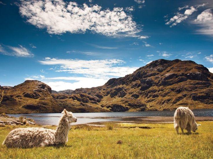 Parque Nacional Cajas, a forty-minute drive from Cuenca, Ecuador.