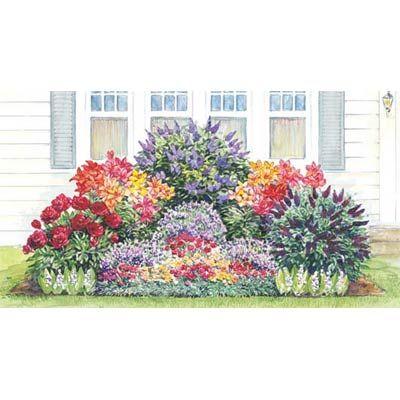 Voňavá záhrada - 8 Mixed Carnations (late spring) - zmes karafiátov (neskorá jar) 8 Mixed Oriental Lilies (summer) - mix orientálnych ľalii (leto) 3 Hardy English Lavender (summer) - anglická levanduľa (leto) 1 Old Fashioned Lilac (spring) - orgován (jar) 1 Red Peony (late spring) - červená pivónia (neskorá jar) 5 Lily-of-the-Valley (spring) - snežienka (jar) 1 Butterfly Bush (our choice of color - fall) Lúka pre motýle