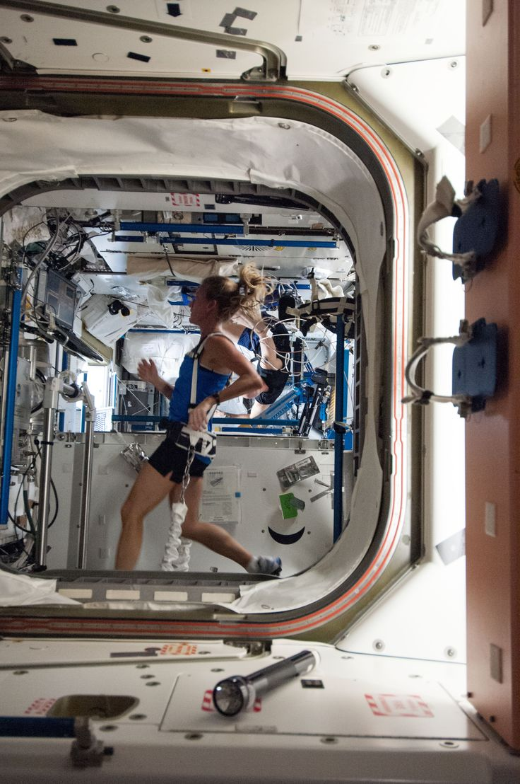 NASA astronaut Karen Nyberg, Expedition 36 flight engineer, equipped with a bungee harness, exercises on the Combined Operational Load Bearing External Resistance Treadmill (COLBERT) in the Tranquility node of the International Space Station. Its use is one of the ways astronauts and cosmonauts maintain muscle mass and bone density in a zero-gravity environment.