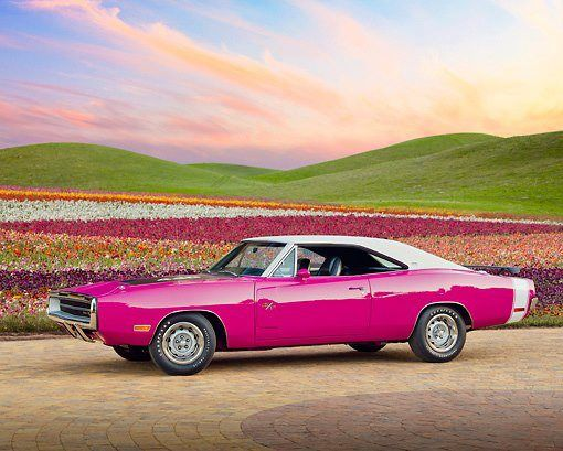 1970 Dodge Charger R-T 440 Six Pac Pink Panther   Kinda Girlie looking but one heck of a car for sure!