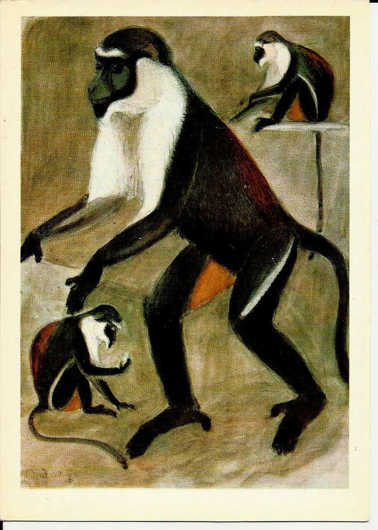 Monkey - Drawing Animal - Vintage Russian Postcard art work  V. Vatagin unused by LucyMarket on Etsy