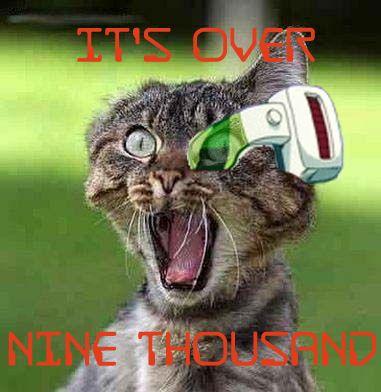 cat vegeta over 9000 meme - Google Search