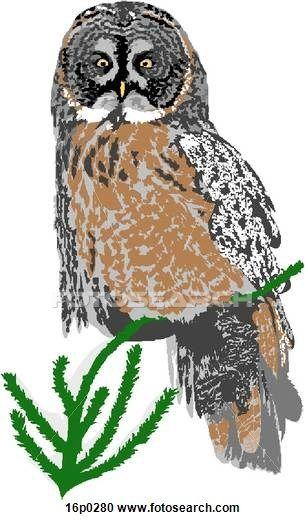 クリップアート(切り張り)イラスト「絵画」集 - 大きい灰色のフクロウ 16p0280 - クリップアート、イラスト壁画、スケッチとベクトル画像EPSグラフィックスイメージの検索 - 16p0280.EPS