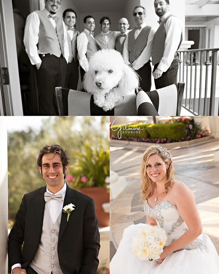 beach weddings in orange county ca%0A St  Regis Hotel   Monarch Beach Wedding Photo   Laguna Niguel Photographers     Gilmore Studios
