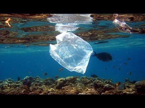 Le plastique La menace sur les océans - Documentaire complet - Fr 2013