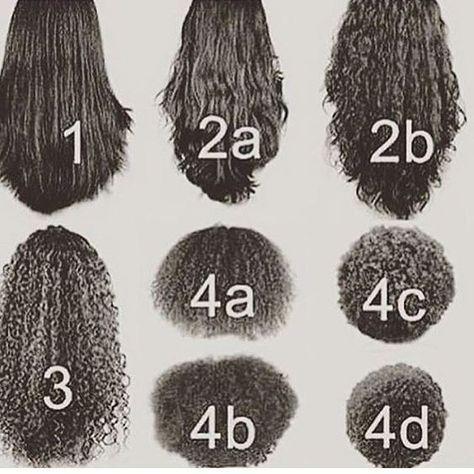 Descubre cuál es tu tipo de cabello http://yasmany.com/descubre-cual-es-tu-tipo-de-cabello/?utm_campaign=coschedule&utm_source=pinterest&utm_medium=YasmanY.com&utm_content=Descubre%20cu%C3%A1l%20es%20tu%20tipo%20de%20cabello
