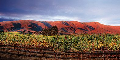 The Santa Lucia Highlands: The Land That Inspired John Steinbeck