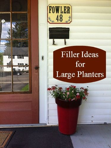 Filler Ideas For Large Planters Ideas For The Garden