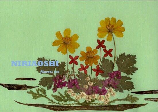 NIRIAOSHI floral arts (PM 160712)