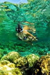 Where to Go Snorkeling in Florida: The Best Florida Snorkeling Spots | Florida Travel + Life