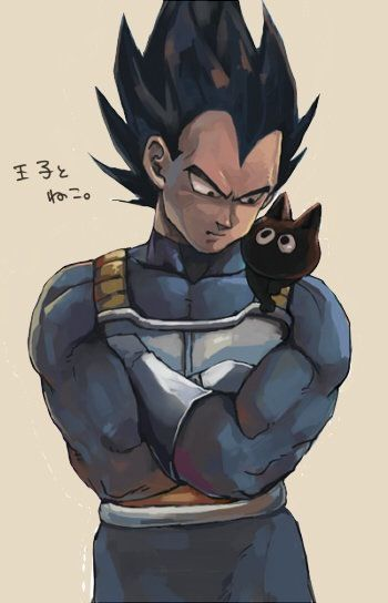 Awesome Vegeta art and Bulma's dad's cat