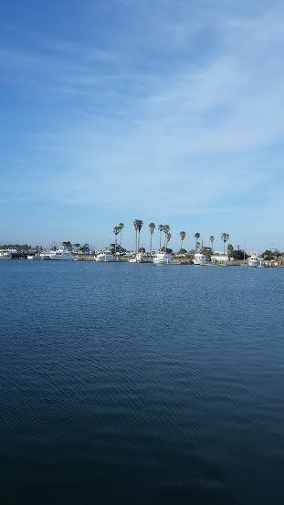 channel islands july 4th 5k