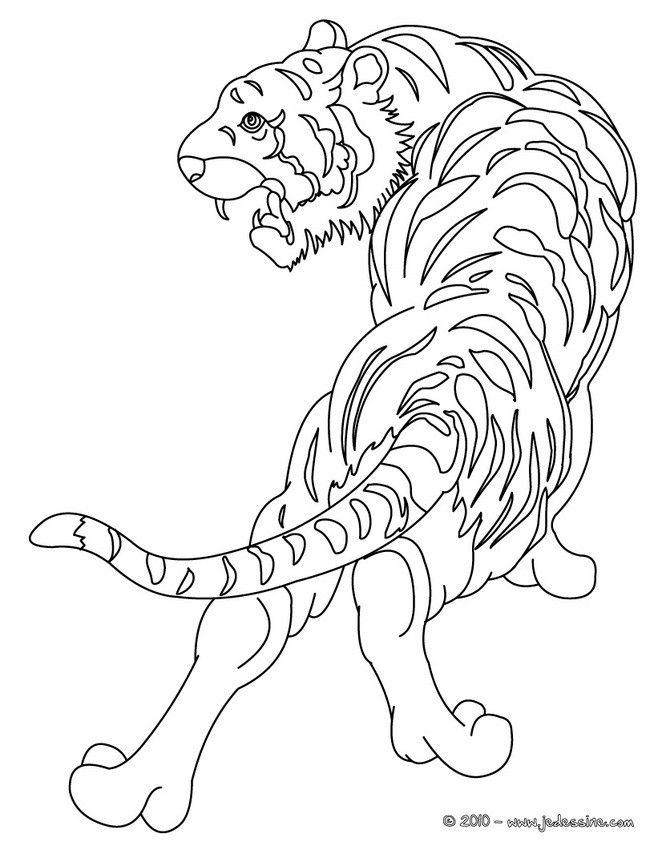 les 25 meilleures idées de la catégorie coloriage tigre sur