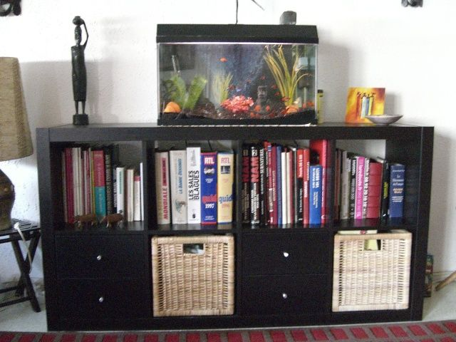 les 25 meilleures id es de la cat gorie aquarium 60l sur. Black Bedroom Furniture Sets. Home Design Ideas