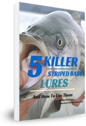 5 Killer Striped Bass Lures and How To Use Them