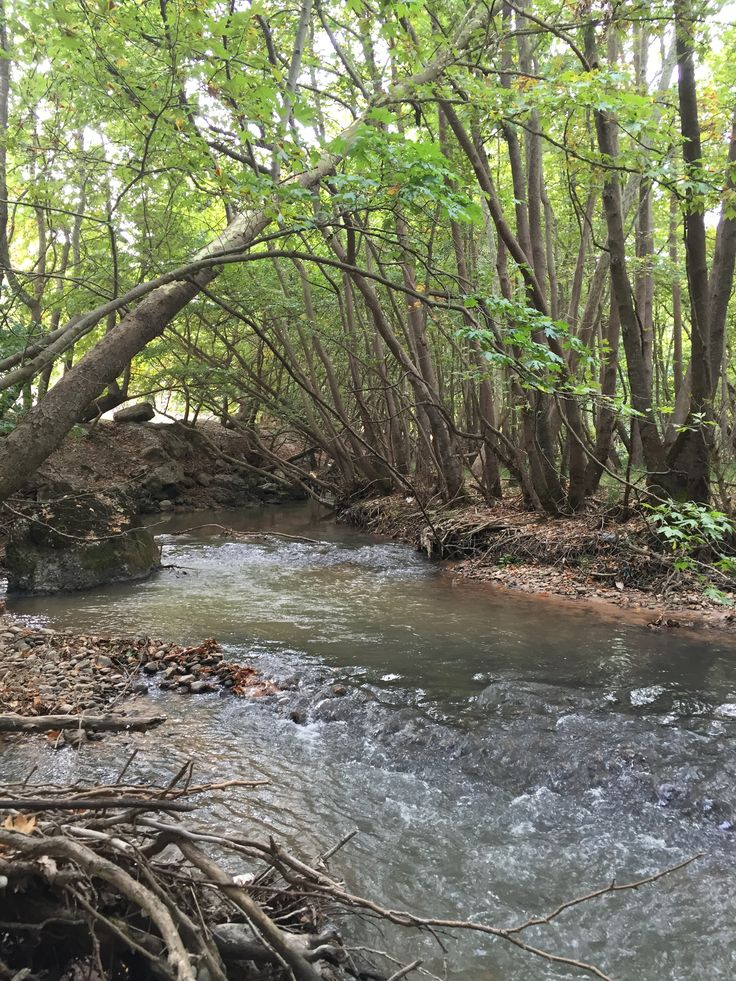 21 river landscape. Kalavrita, Greece (Zachlorou area)
