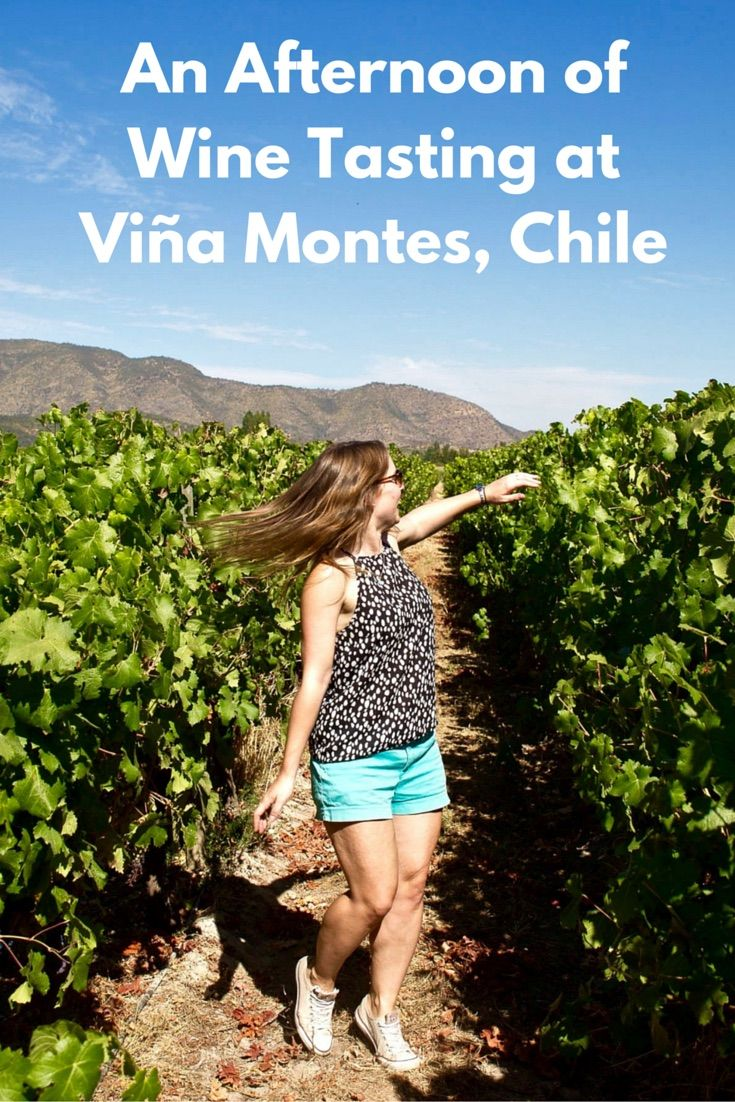 Wine tasting in the Colchagua Valley.   What happened when I headed to Vina Montes - one of the top places to go wine tasting in the Colchagua Valley....    http://www.wanderlustchloe.com/2016/05/top-places-to-go-wine-tasting-in-the-colchagua-valley-vina-montes.html