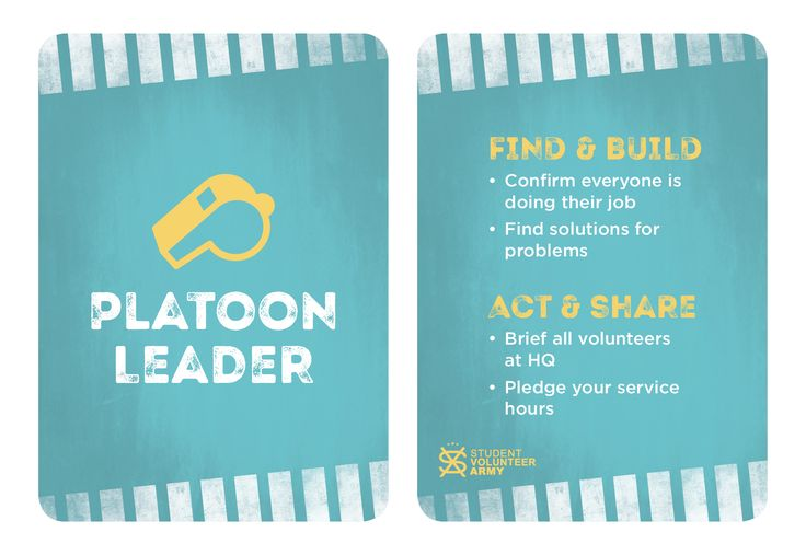 Project Team Role - Platoon Leader