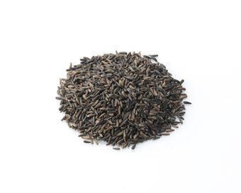 Wild Bird Feed Nyjer Seed Also known as Niger Nyger this small black seed is a firm favourite with many garden birds Rich in oils and a good source
