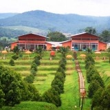 Obyek Wisata Agrowisata Kebun Ngebruk