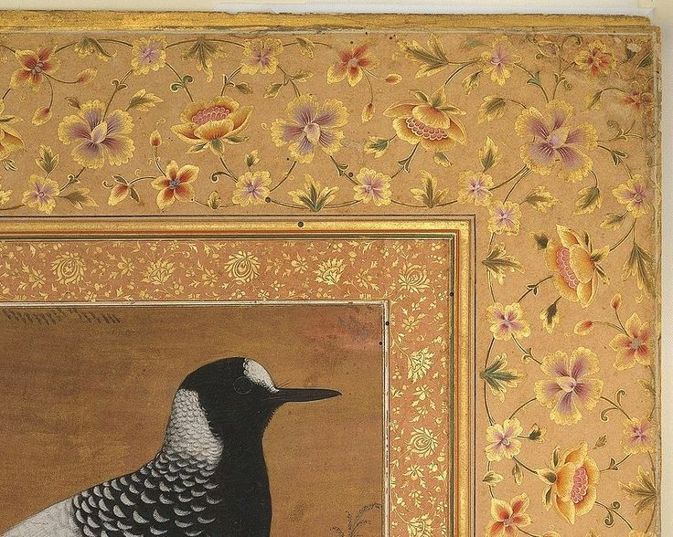 7 Abu'l Hasan, Spotted Forktail, Folio from the Shah Jahan Album ca. 1610–15 Metropolitan Museum New-York - Detail   Artist: Painting by Abu'l Hasan (Indian, born ca. 1588/89, active 1600–1628)  Object Name: Album leaf Date: recto: ca. 1610–15; verso ca. 1540 Geography: India Medium: Ink, opaque watercolor, and gold on silk Dimensions: H. 15 3/16 in. (38.6 cm) W. 10 3/8 in. (26.3 cm)