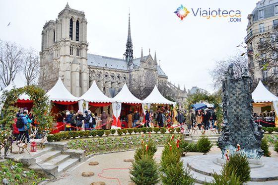catedral de Notre-Dame Natal em Paris