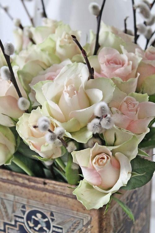 Hermosas rosas   ❦ Rose Cottage ❦   Pinterest)