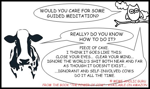 "Guided Meditation Meme - From the book ""The Power of Cow"" by Meme-aholic Guru ......................................................................................................................................................[Keywords:funny yoga memes, yoga jokes, anti-stress memes,  yoga funny meditation quotes, meditation jokes, funny yoga cartoon quotes, spiritual memes, funny meditation meme, funny mindfulness jokes and memes, mindfulness funny quotes, live in the moment funny memes]"