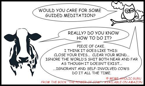 "Guided Meditation Meme - From the book ""The Power of Cow"" by Meme-aholic Guru ......................................................................................................................................................[Keywords:funny yoga memes, yoga jokes, anti-stress memes,  yoga funny meditation quotes, meditation jokes, funny yoga cartoon quotes, spiritual memes, funny meditation meme, funny mindfulness jokes and memes, mindfulness funny quotes, live in the moment funny memes]"