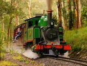 Puffing Billy steam train, mt dandenong, VIC