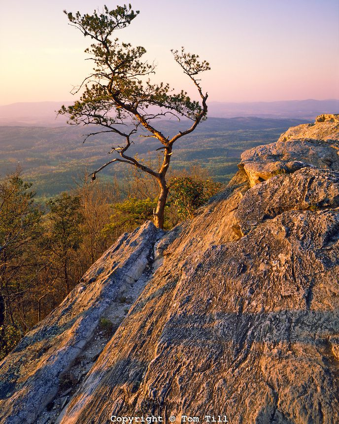 Cheaha Mountain, Cheaha Mountain State Park, Cheaha Wilderness, Talladega National Forest, Alabama